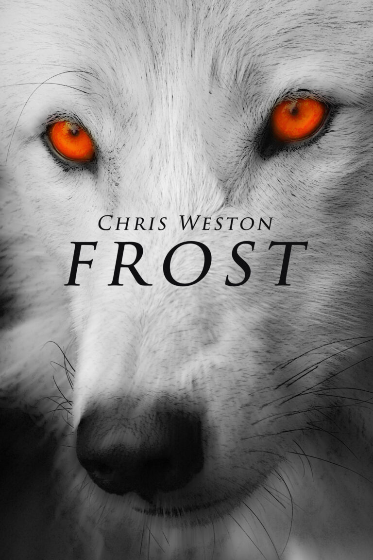 Frost Book Cover
